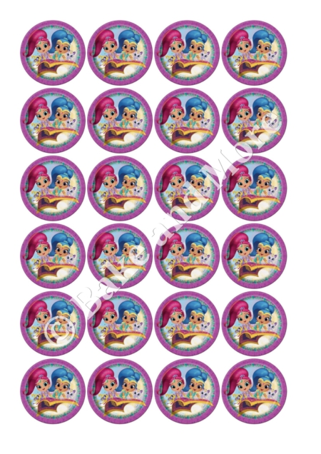 Shimmer and Shine Rond 1 cupcakes