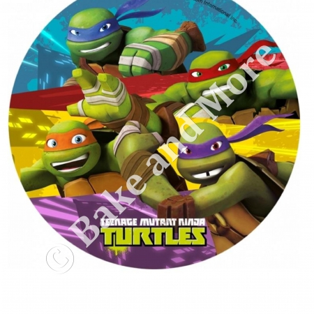 Ninja Turtles Rond 2